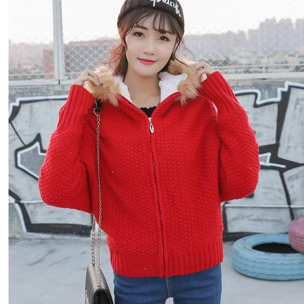 New Long Sleeve Hooded Cardigan Sweater Coat